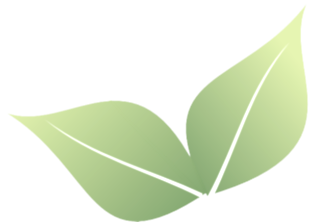 2 clipart leaf