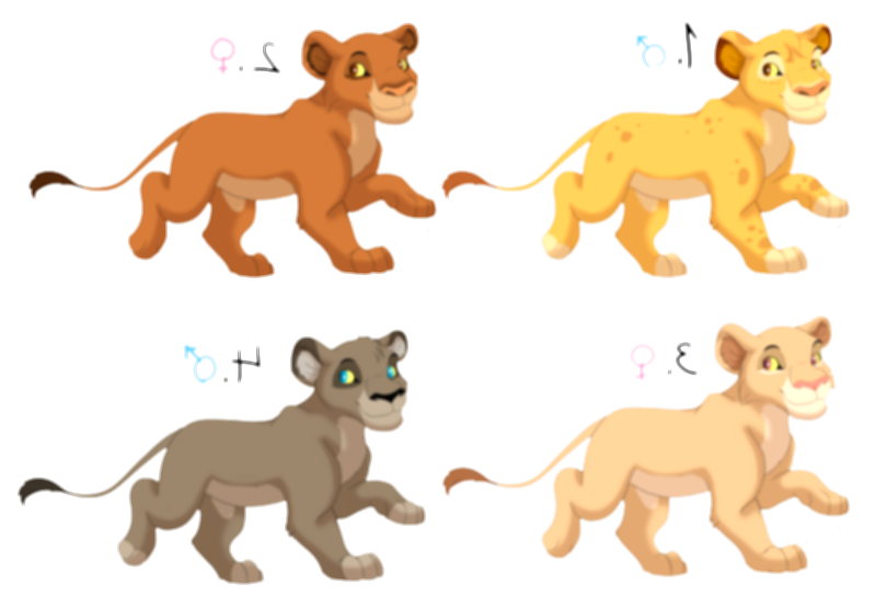 3 drawing cubs lion