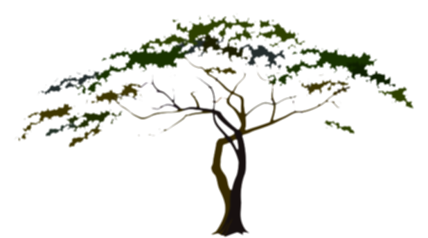 african tree png