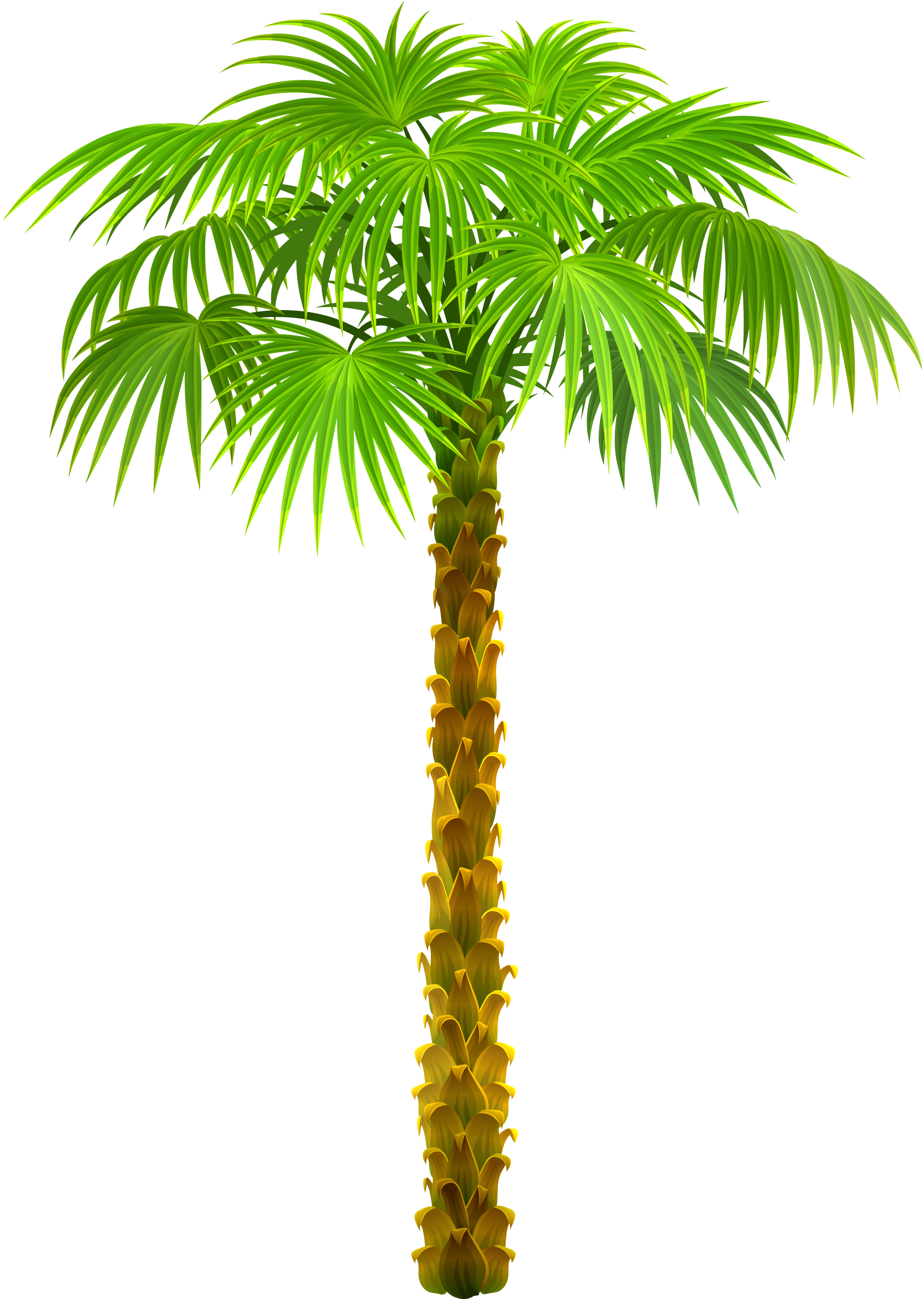animated palm tree png