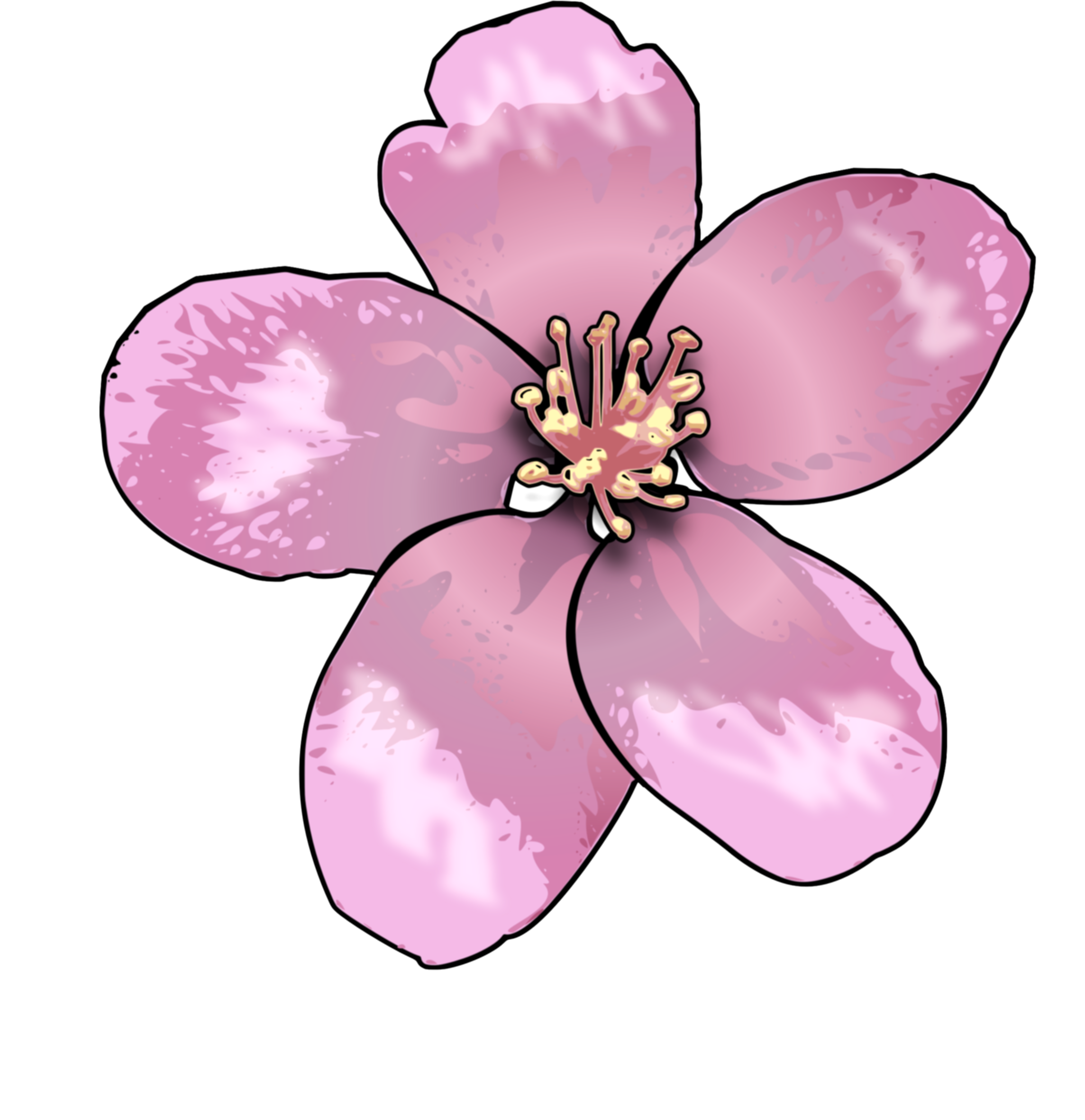 apple blossom png