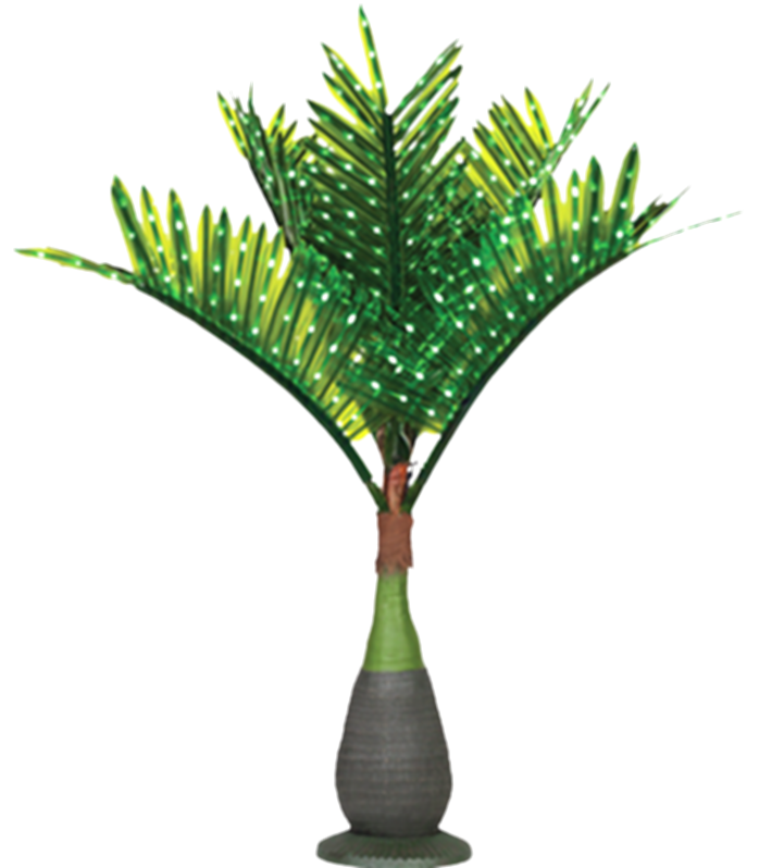 curved palm tree png