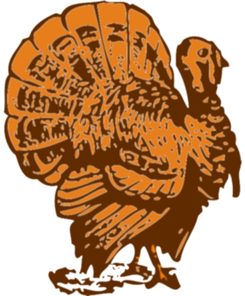 drawing turkey color