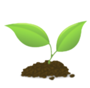 other clipart seedling